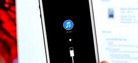 iPhone 6S Plus 16GB không dịch vụ… Anh Muốn Em Sống Sao?